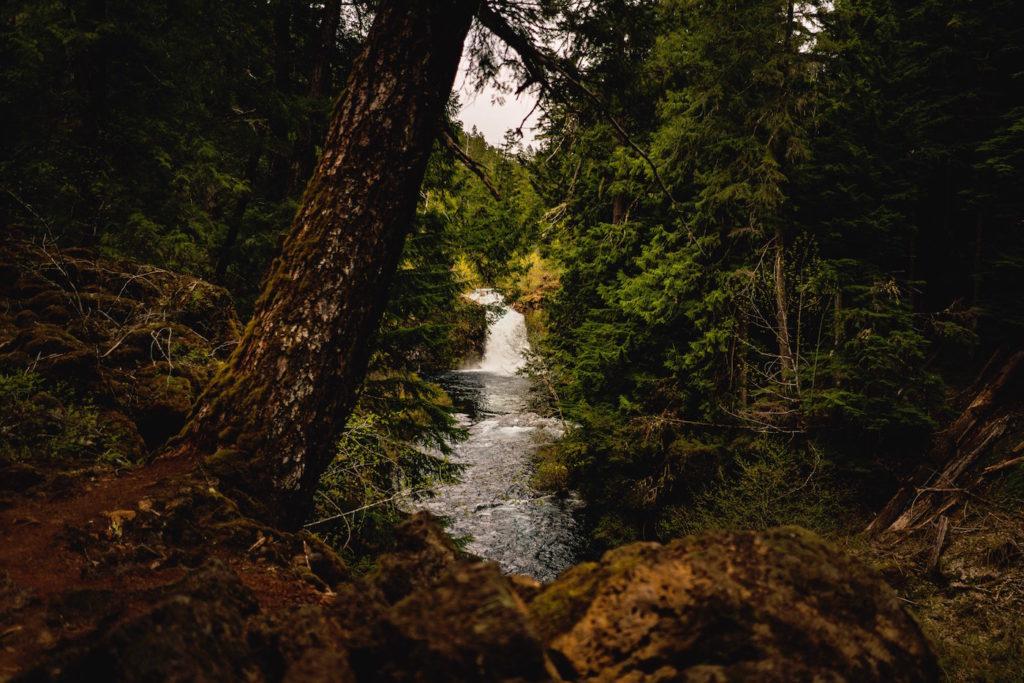 Tamolitch Falls Bend Oregon
